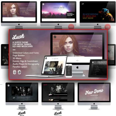 Скачать Lush-Music Band & Musician WordPress Theme на сайте rus-opencart.info