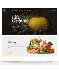 Colora-Organic Responsive Opencart Theme